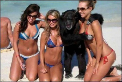 monkey-with-girls.jpg